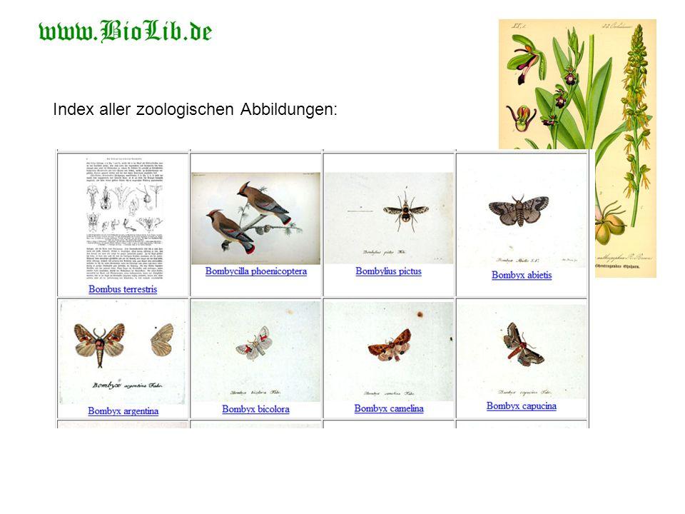 Index aller zoologischen Abbildungen: