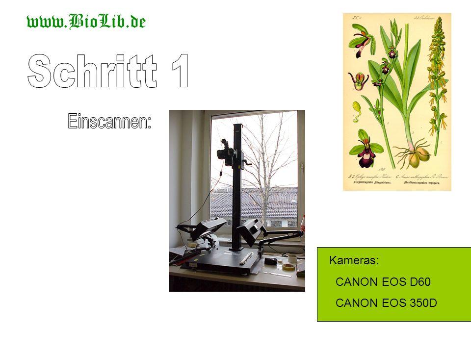 Schritt 1 Einscannen: Kameras: CANON EOS D60 CANON EOS 350D