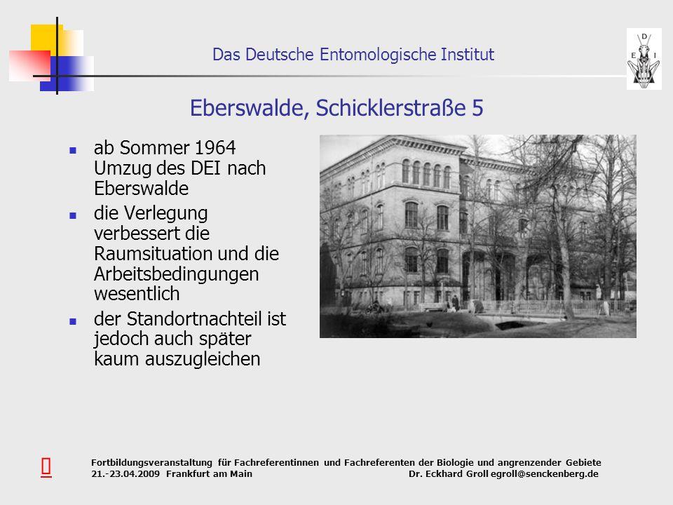 Eberswalde, Schicklerstraße 5