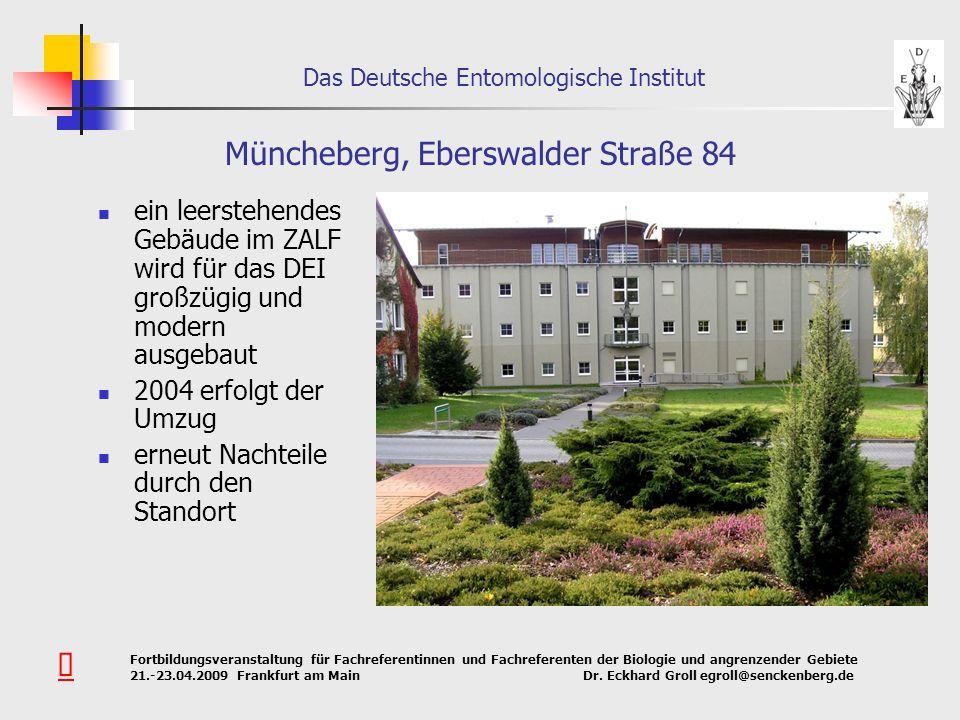 Müncheberg, Eberswalder Straße 84