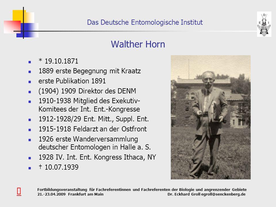 Walther Horn Û * 19.10.1871 1889 erste Begegnung mit Kraatz