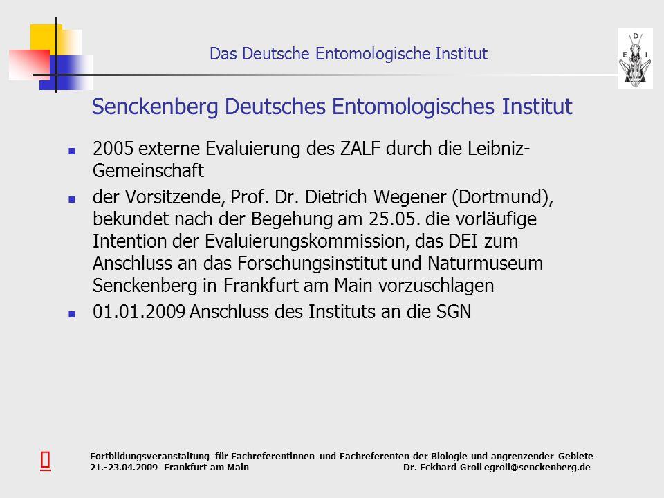 Senckenberg Deutsches Entomologisches Institut