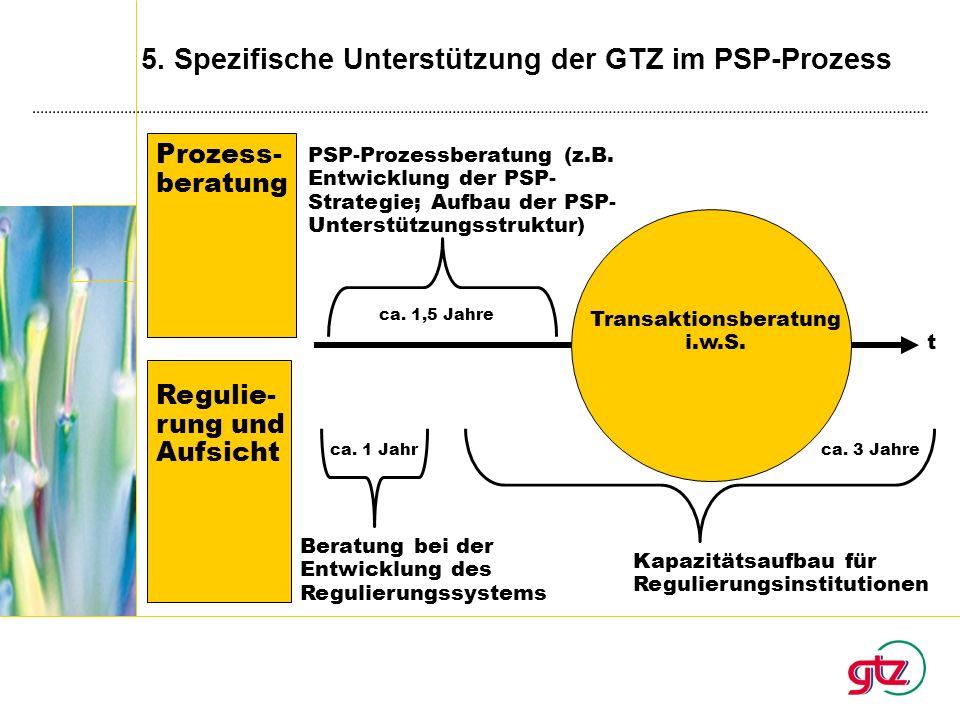 5. Spezifische Unterstützung der GTZ im PSP-Prozess