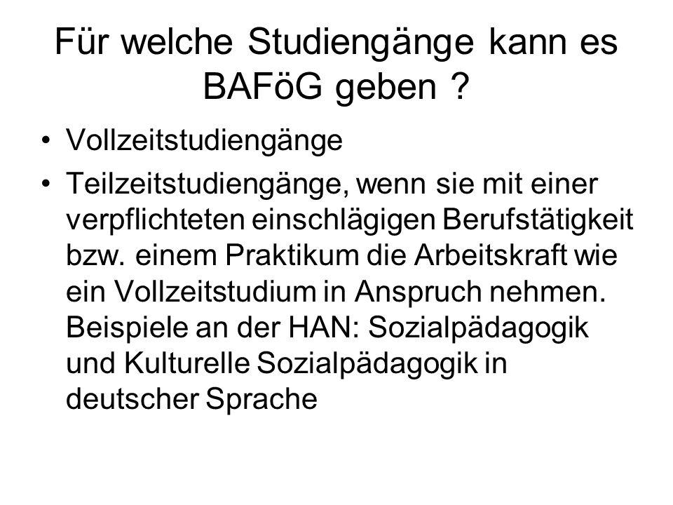 Für welche Studiengänge kann es BAFöG geben