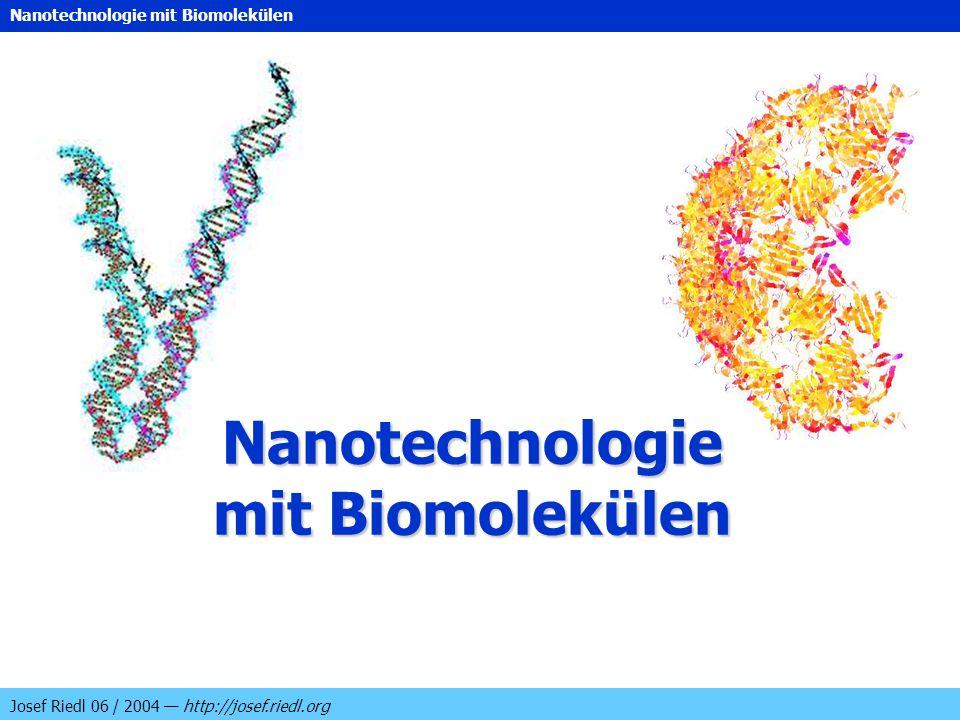 Nanotechnologie mit Biomolekülen