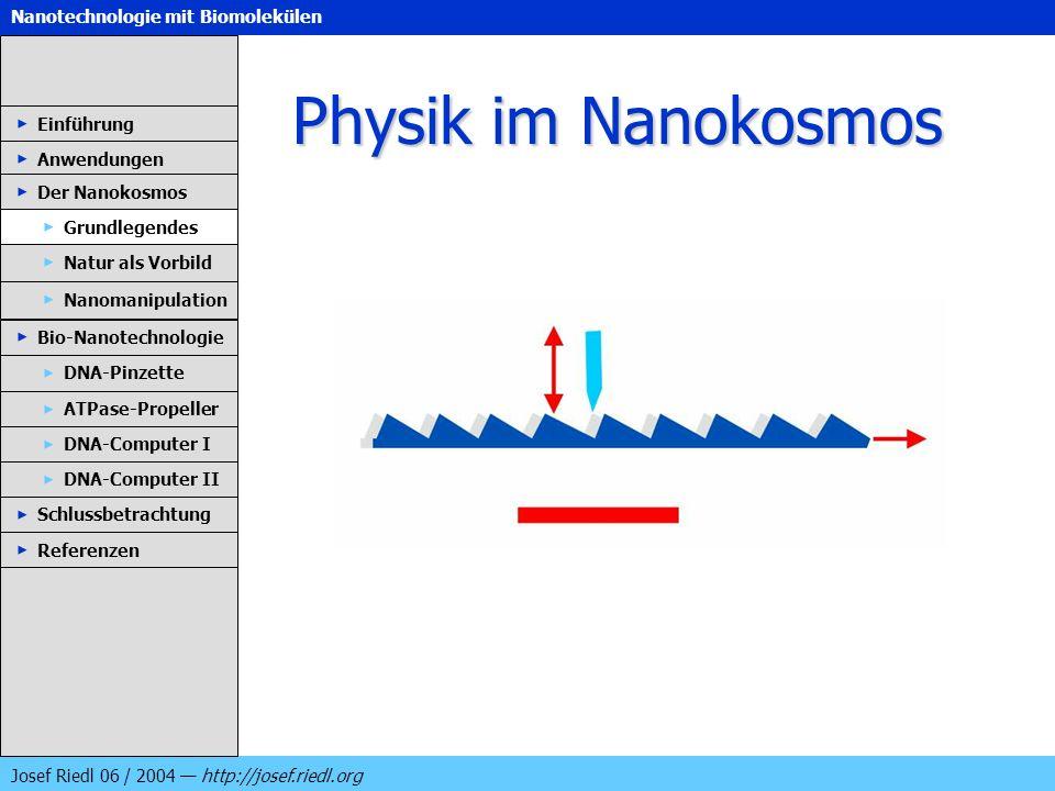 Physik im Nanokosmos Einführung Anwendungen Der Nanokosmos