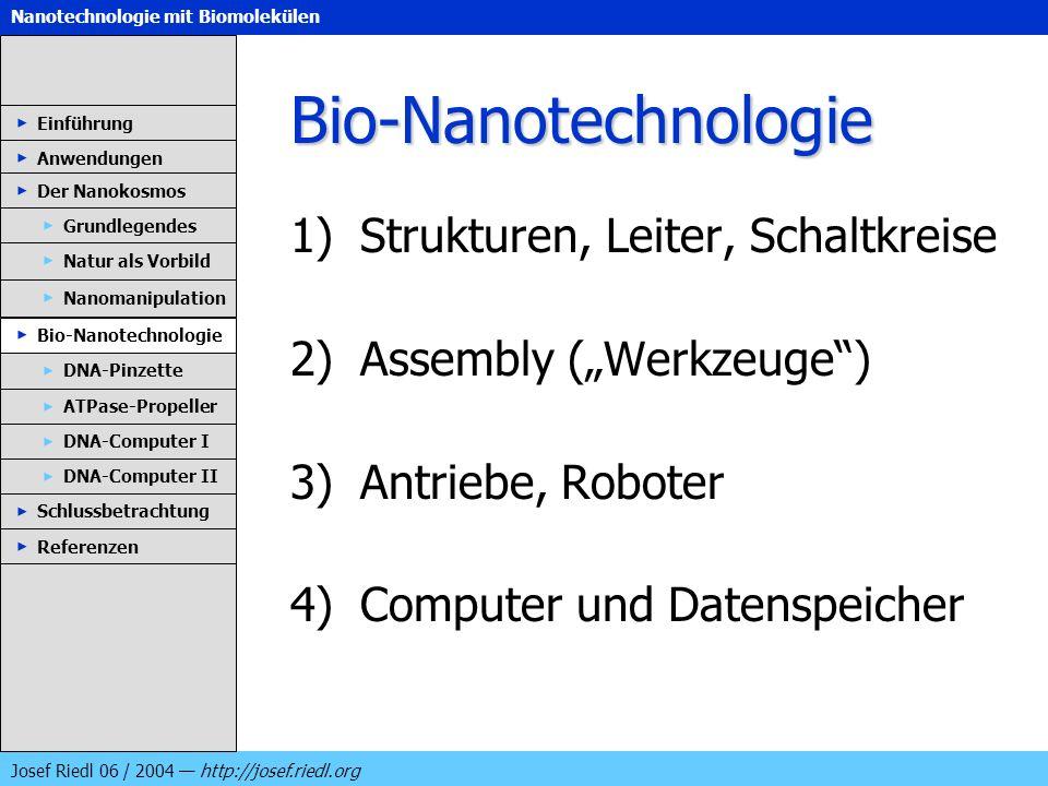 Bio-Nanotechnologie Strukturen, Leiter, Schaltkreise