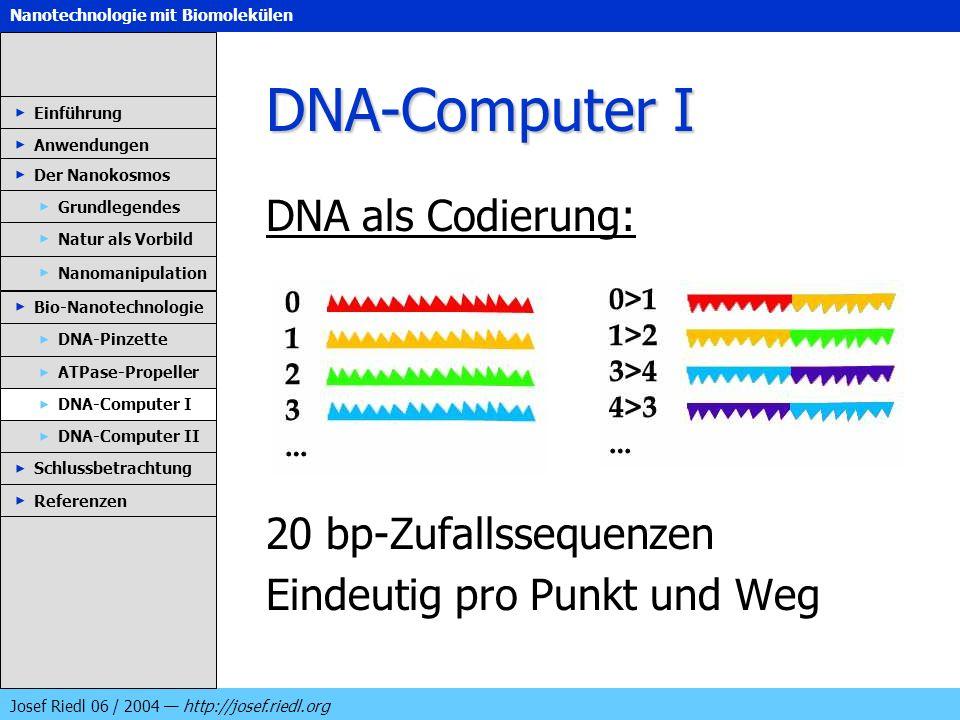 DNA-Computer I DNA als Codierung: 20 bp-Zufallssequenzen
