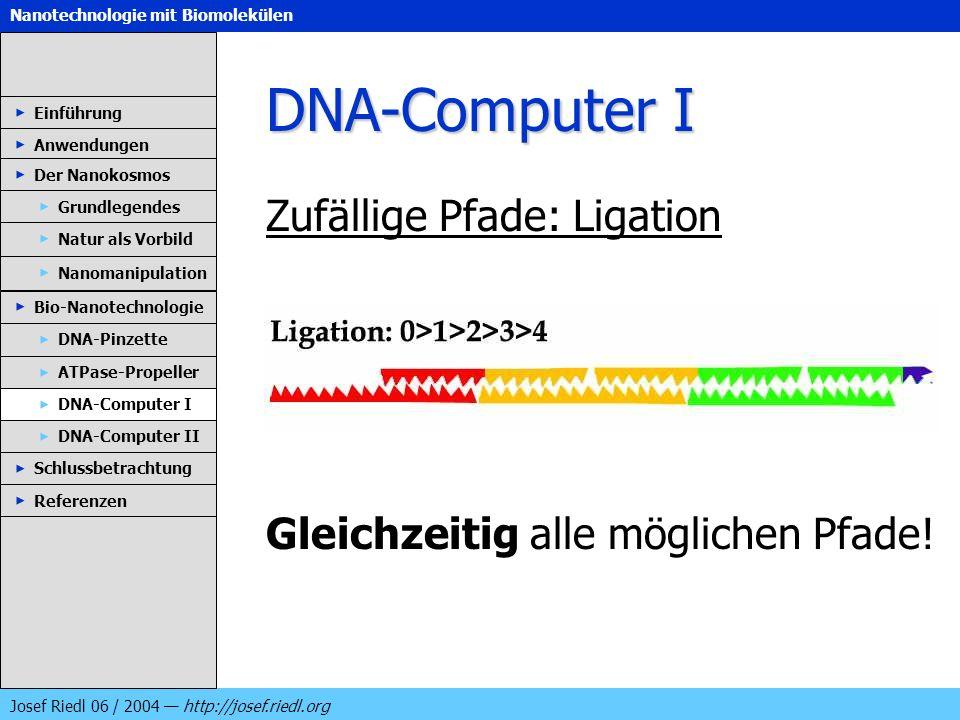 DNA-Computer I Zufällige Pfade: Ligation