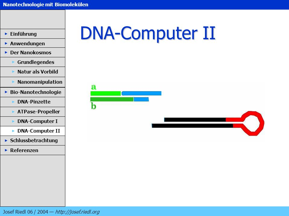 DNA-Computer II Einführung Anwendungen Der Nanokosmos Grundlegendes