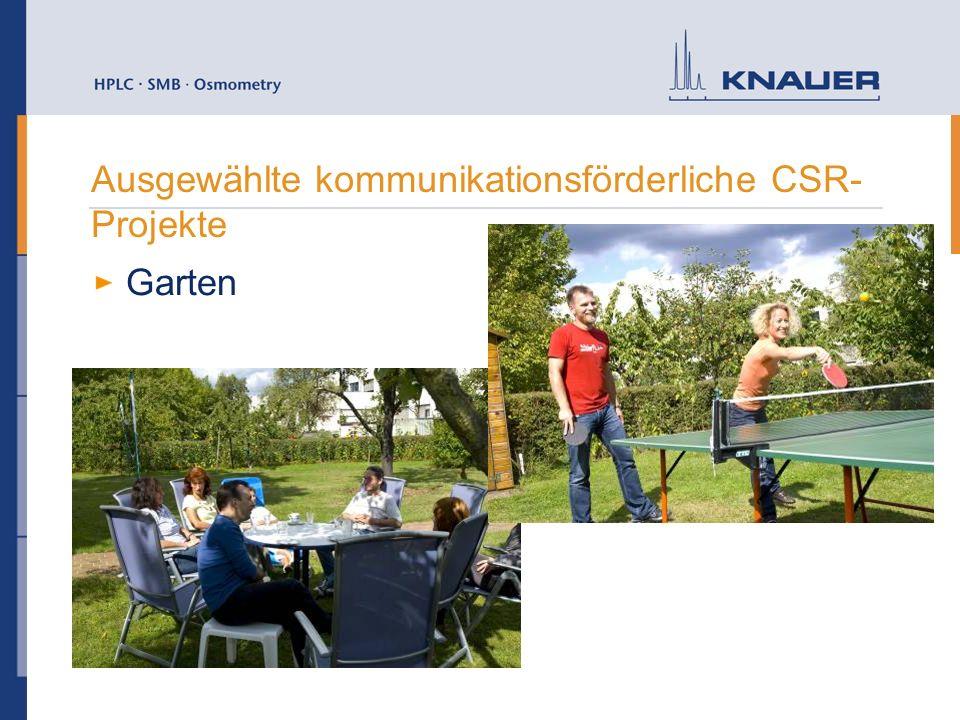 Ausgewählte kommunikationsförderliche CSR-Projekte