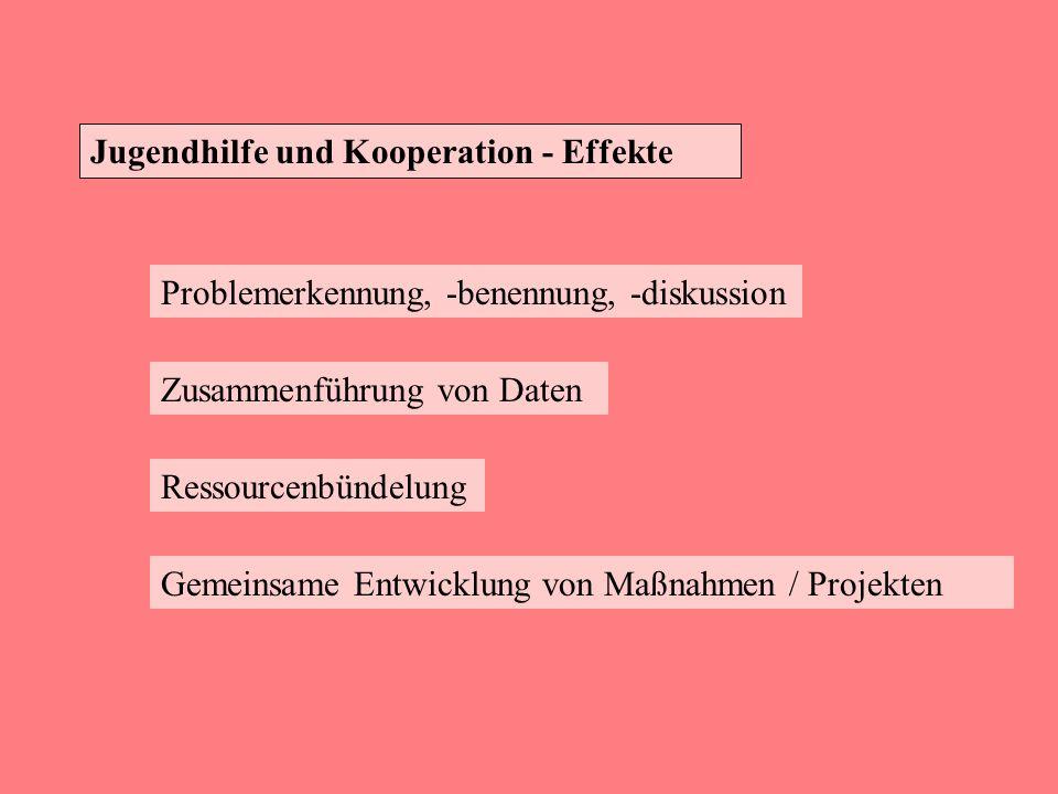 Jugendhilfe und Kooperation - Effekte
