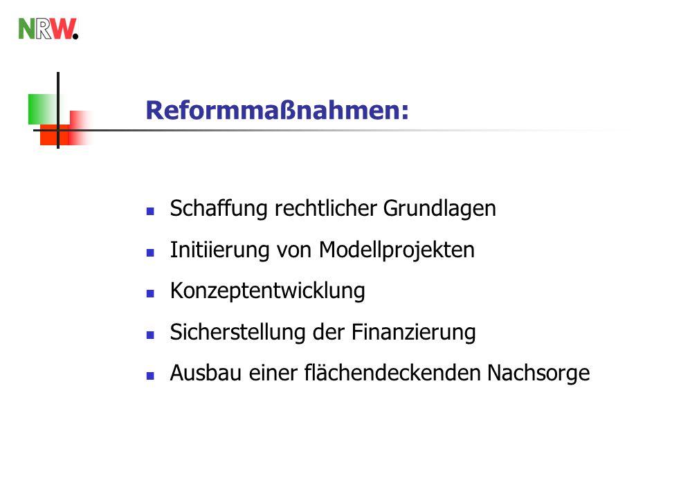 Reformmaßnahmen: Schaffung rechtlicher Grundlagen