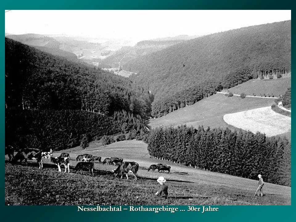 Nesselbachtal – Rothaargebirge ... 30er Jahre