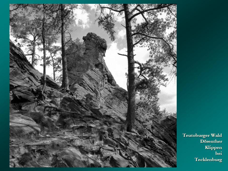Teutoburger Wald Dörenther Klippen bei Tecklenburg