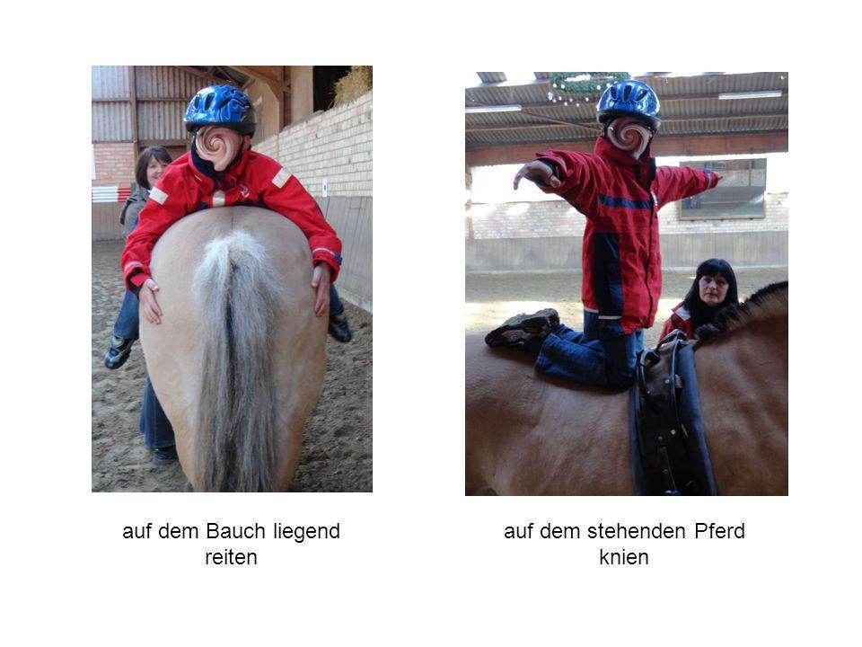 auf dem Bauch liegend reiten auf dem stehenden Pferd knien