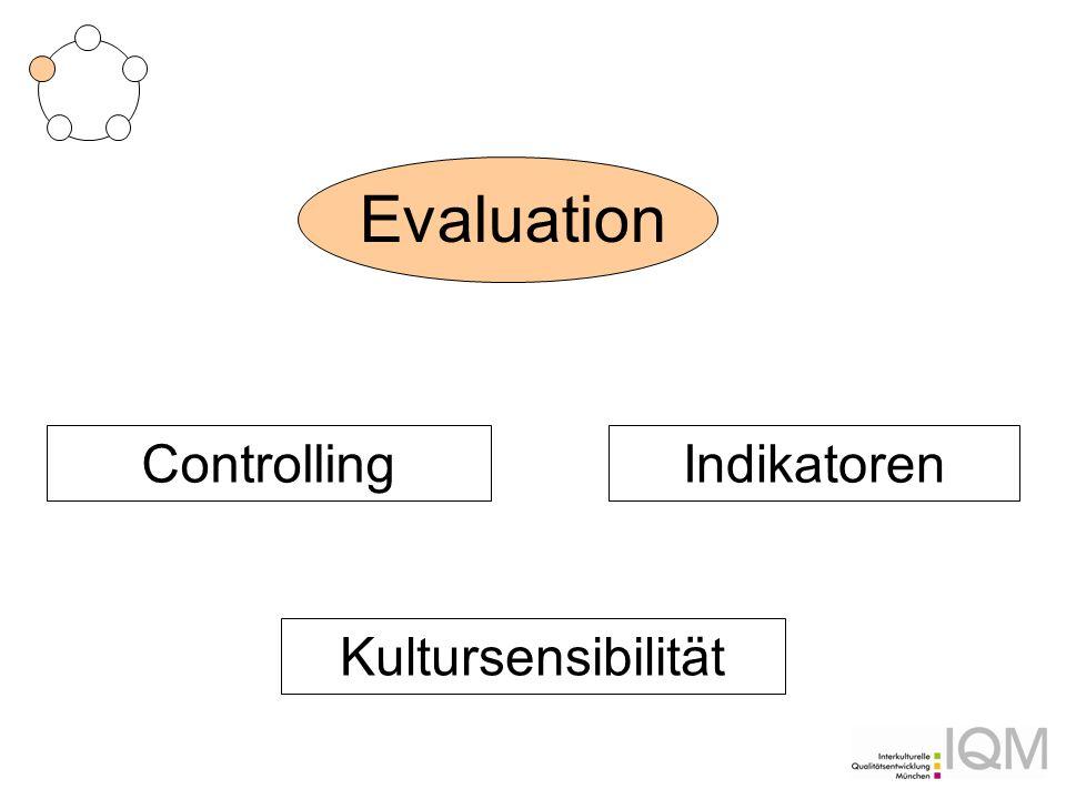 Evaluation Controlling Indikatoren Kultursensibilität