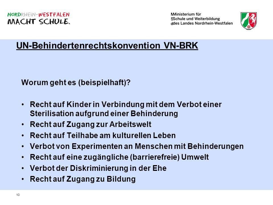 UN-Behindertenrechtskonvention VN-BRK