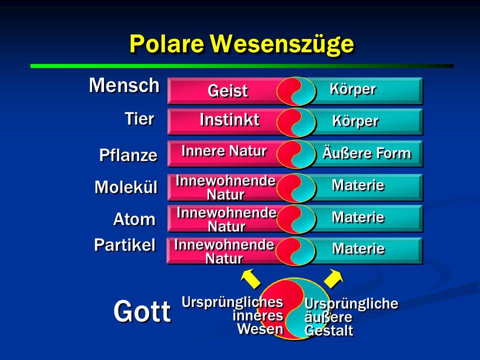 Gott Polare Wesenszüge Mensch Geist Tier Instinkt Pflanze Molekül Atom