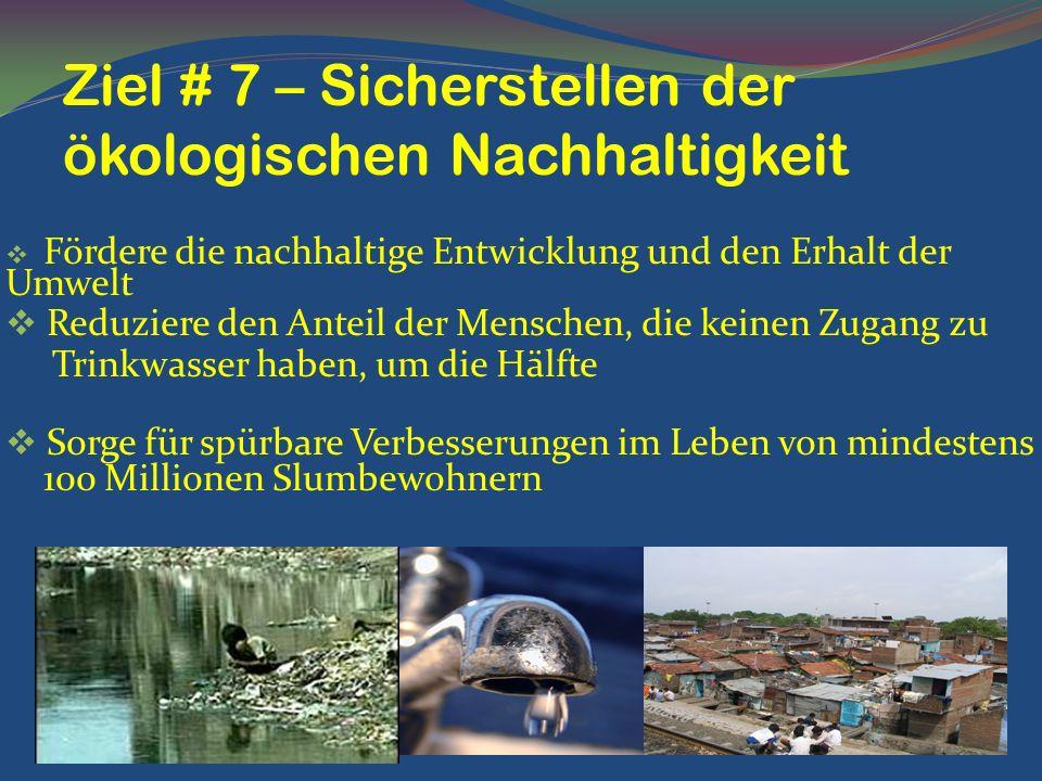 Ziel # 7 – Sicherstellen der ökologischen Nachhaltigkeit