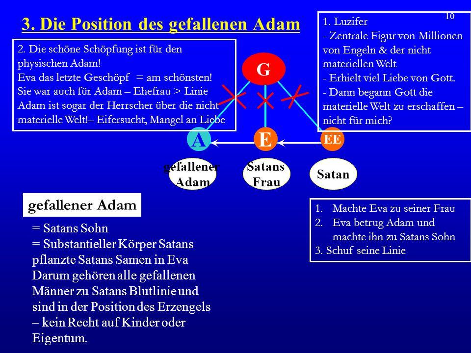 3. Die Position des gefallenen Adam