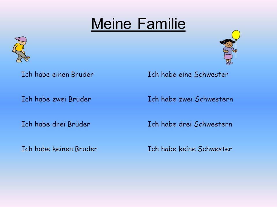 Meine Familie Ich habe einen Bruder Ich habe zwei Brüder
