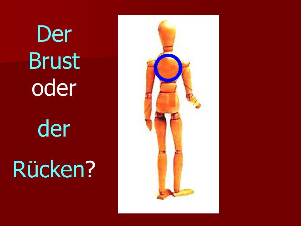 Der Brust oder der Rücken