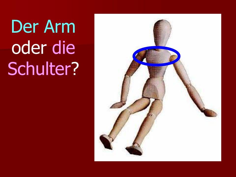 Der Arm oder die Schulter