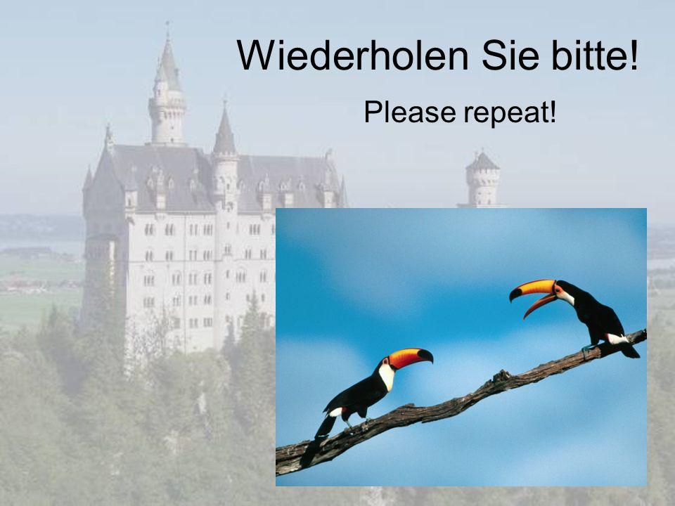 Wiederholen Sie bitte! Please repeat!