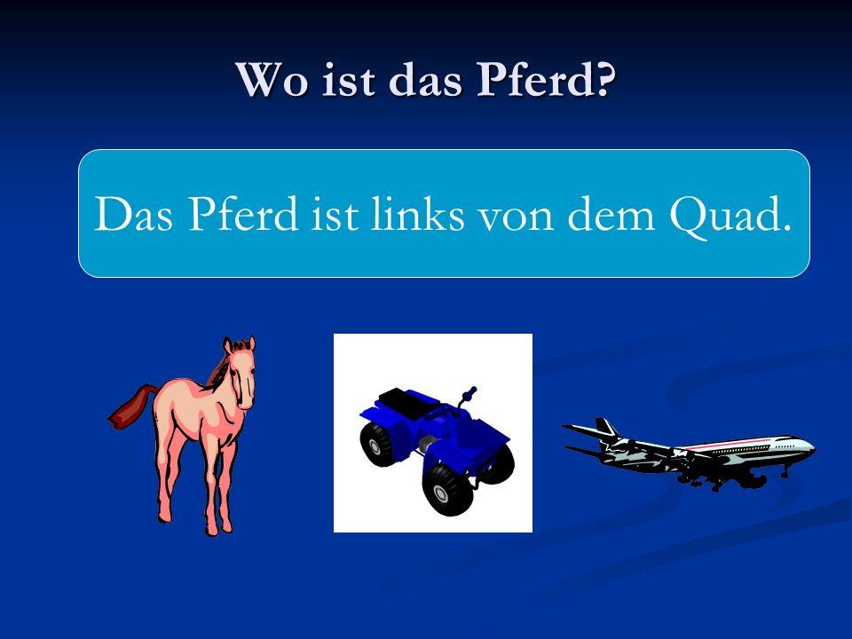 Das Pferd ist links von dem Quad.