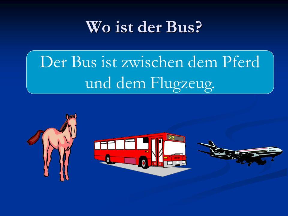 Der Bus ist zwischen dem Pferd