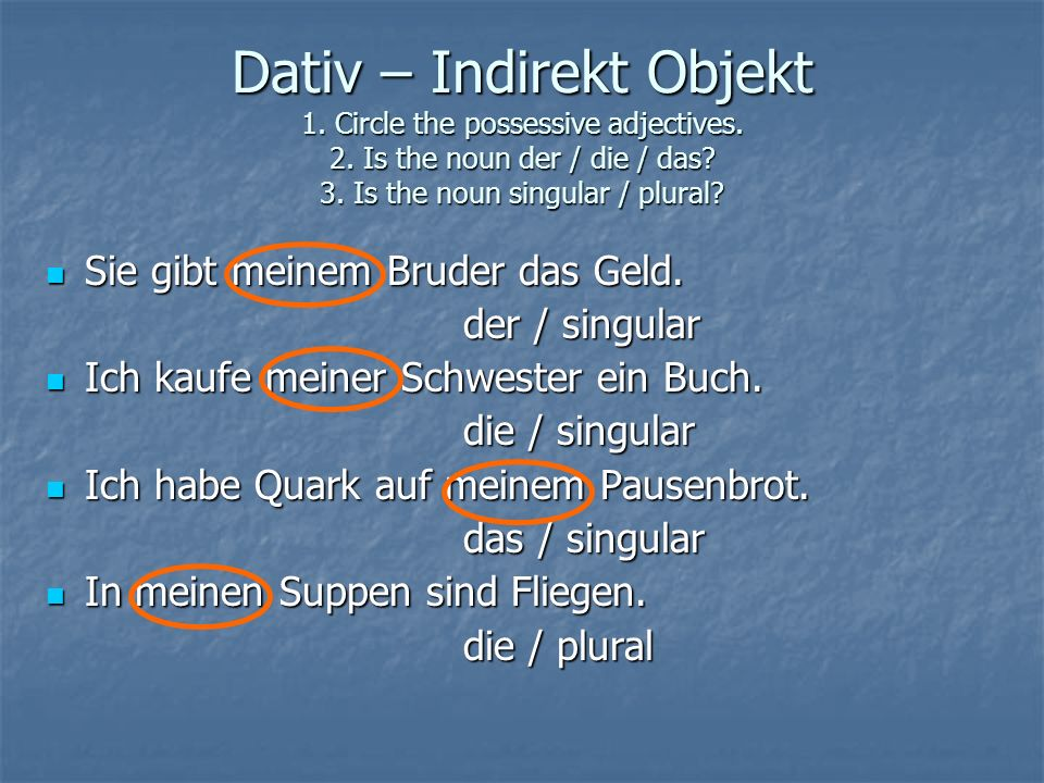 Dativ – Indirekt Objekt 1. Circle the possessive adjectives. 2