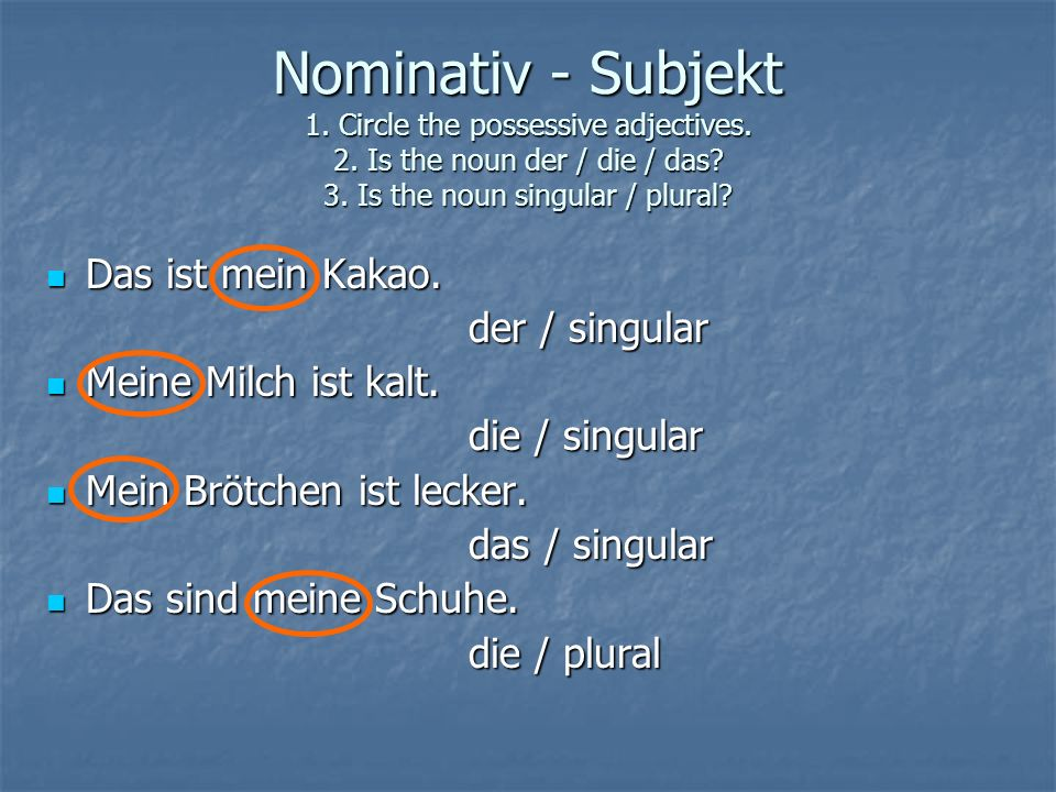 Nominativ - Subjekt 1. Circle the possessive adjectives. 2