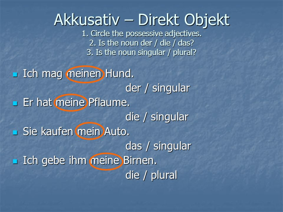 Akkusativ – Direkt Objekt 1. Circle the possessive adjectives. 2