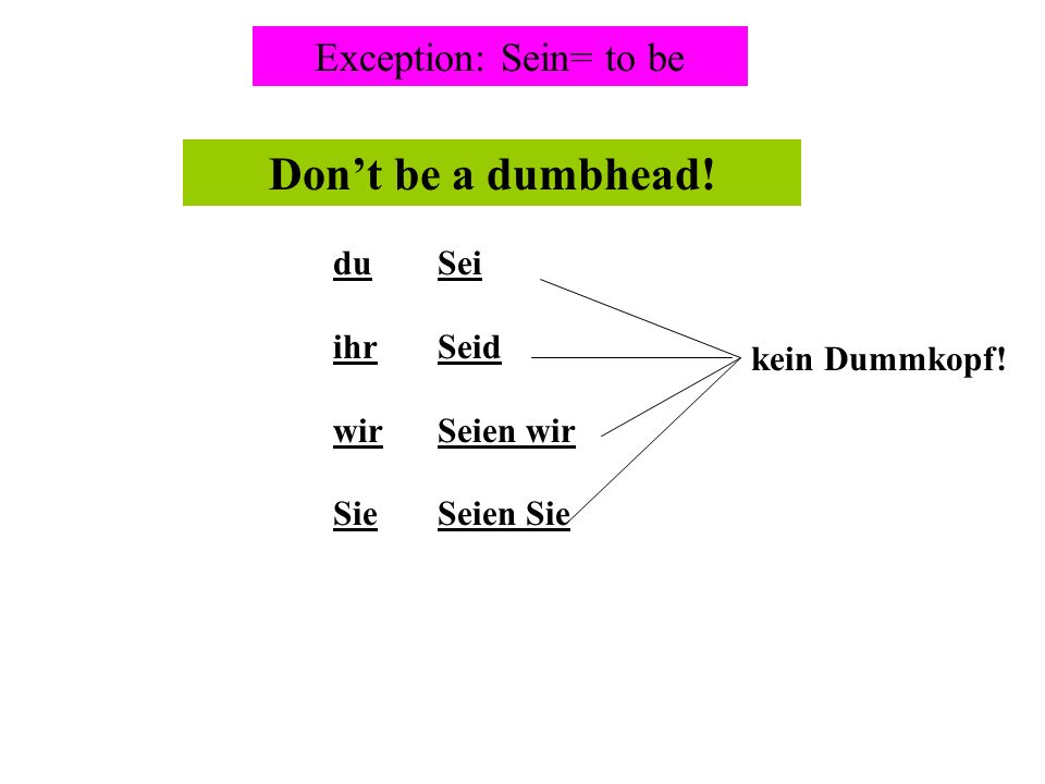 Don't be a dumbhead! Exception: Sein= to be du ihr wir Sie Sei Seid