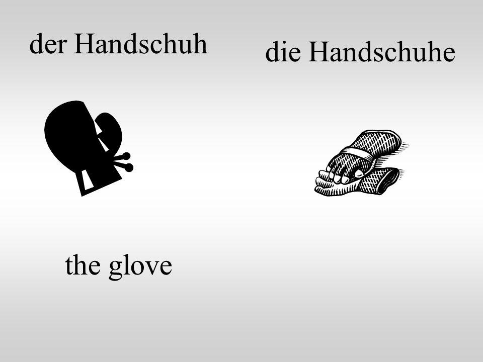 der Handschuh die Handschuhe the glove