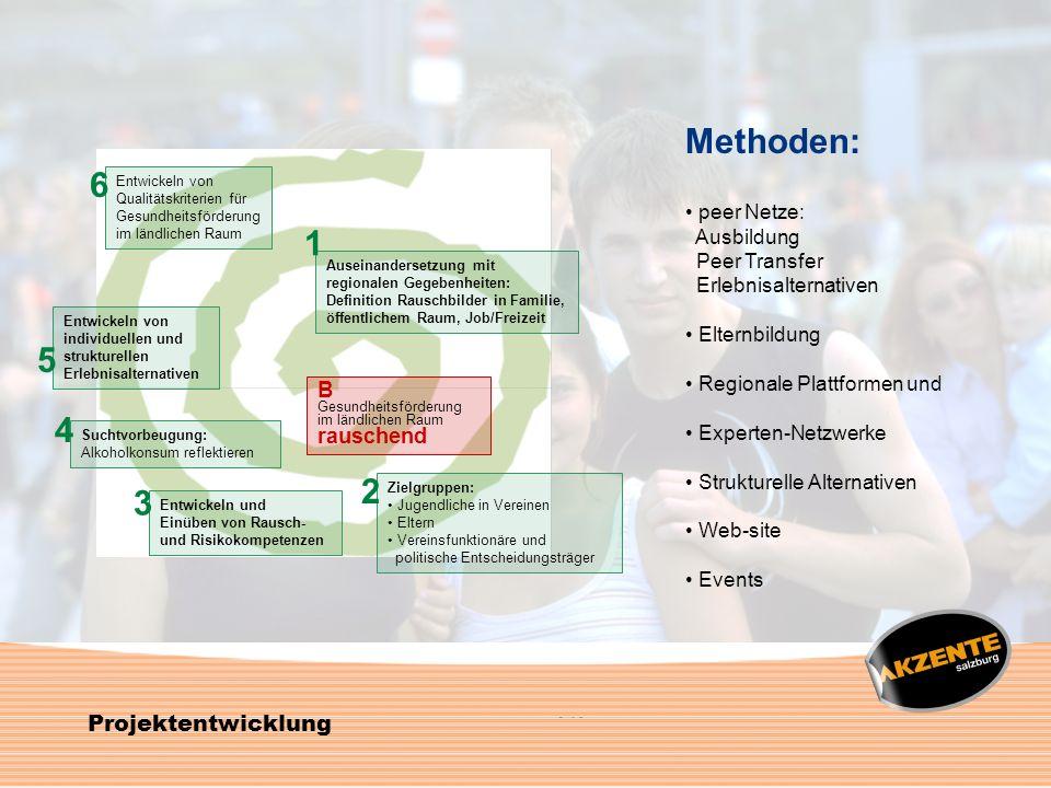 Methoden: 6 1 5 4 2 3 Projektentwicklung B rauschend peer Netze: