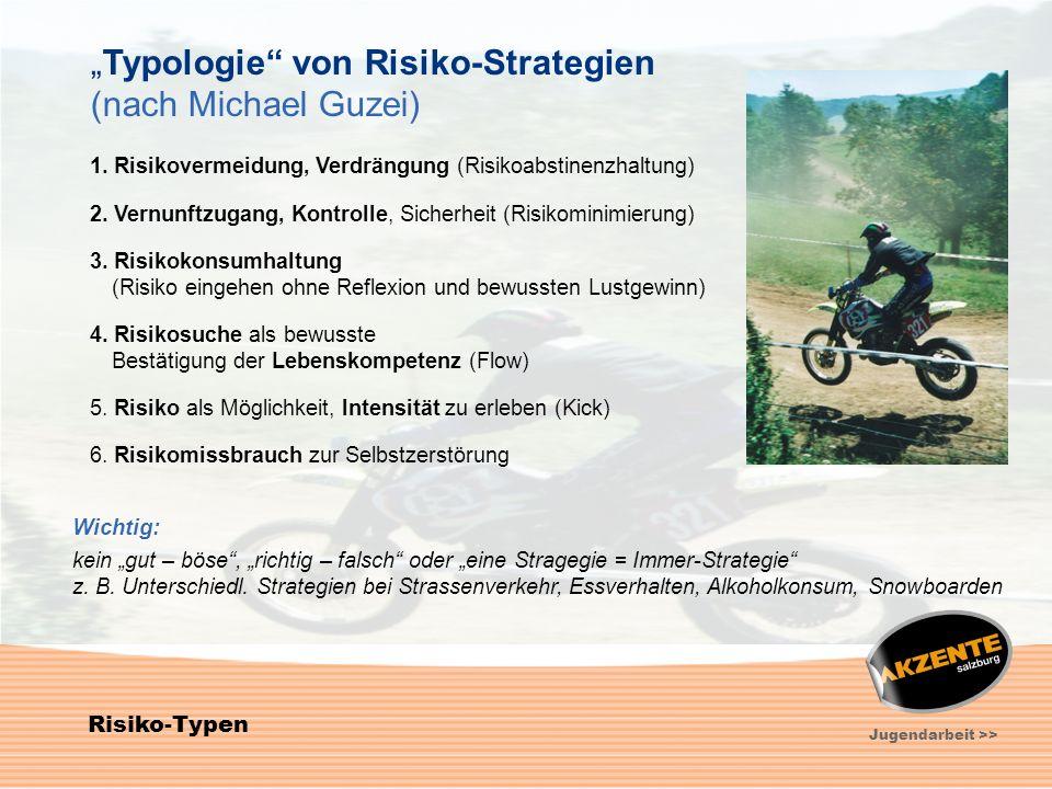"""""""Typologie von Risiko-Strategien (nach Michael Guzei)"""