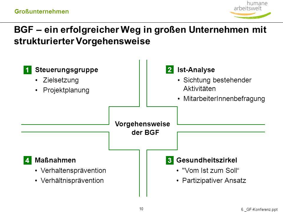 Vorgehensweise der BGF