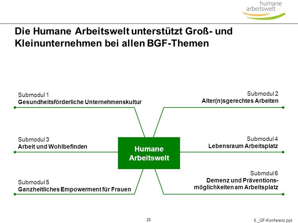 Die Humane Arbeitswelt unterstützt Groß- und Kleinunternehmen bei allen BGF-Themen