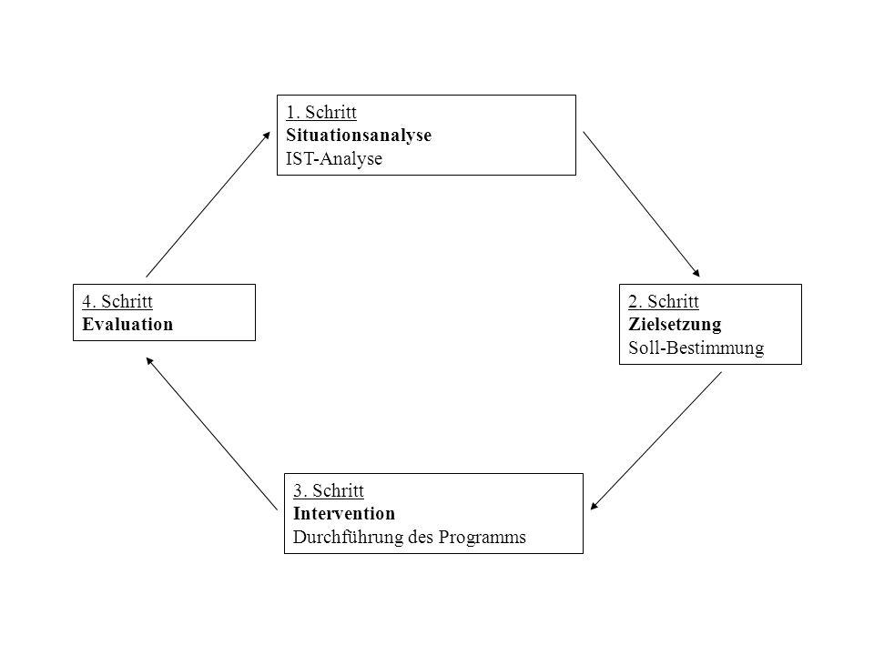1. Schritt Situationsanalyse IST-Analyse