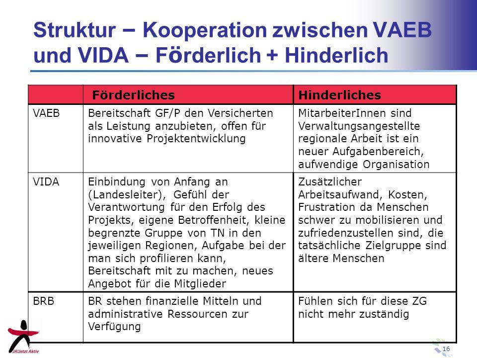 Struktur – Kooperation zwischen VAEB und VIDA – Förderlich + Hinderlich