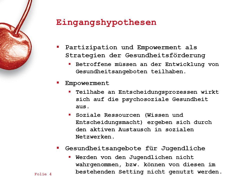Eingangshypothesen Partizipation und Empowerment als Strategien der Gesundheitsförderung.