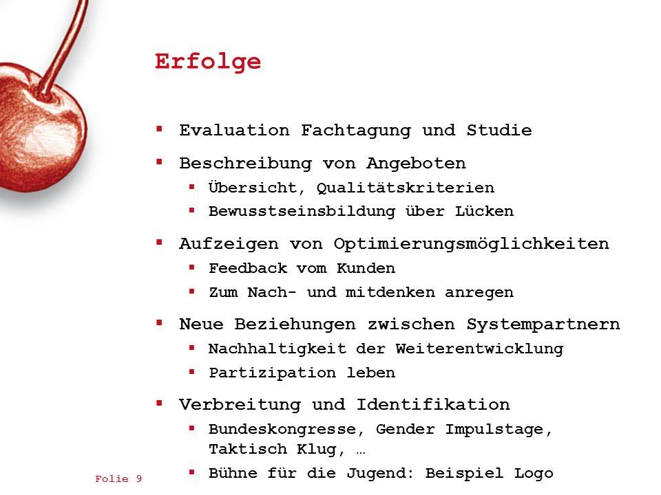 Erfolge Evaluation Fachtagung und Studie Beschreibung von Angeboten