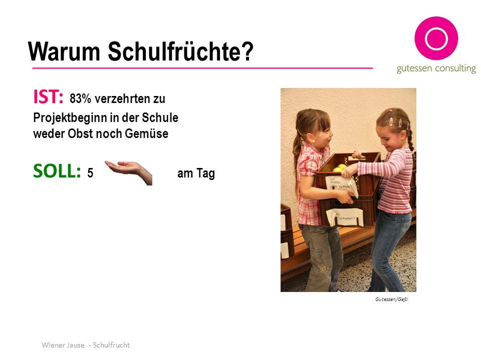 Wiener Jause - Schulfrucht