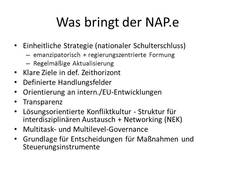 Was bringt der NAP.e Einheitliche Strategie (nationaler Schulterschluss) emanzipatorisch + regierungszentrierte Formung.