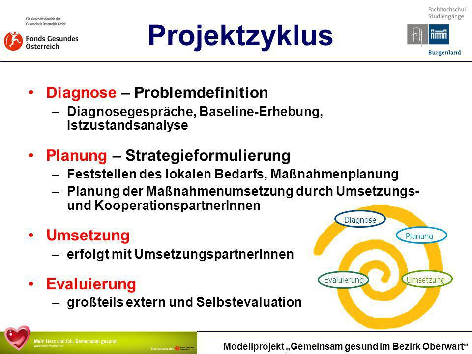 Projektzyklus Diagnose – Problemdefinition