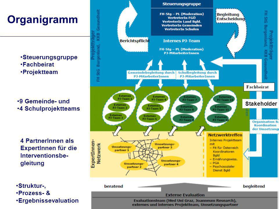 Organigramm Steuerungsgruppe Fachbeirat Projektteam 9 Gemeinde- und