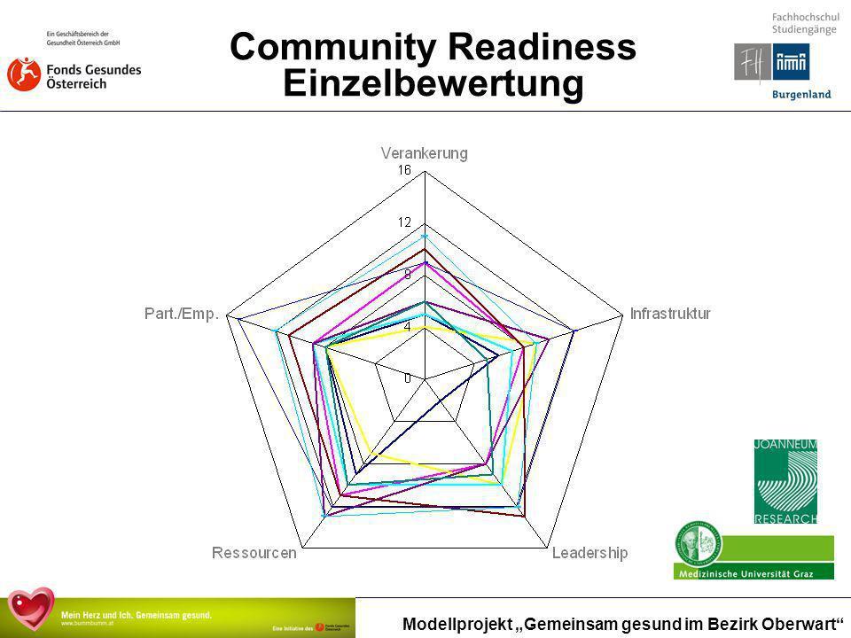 Community Readiness Einzelbewertung