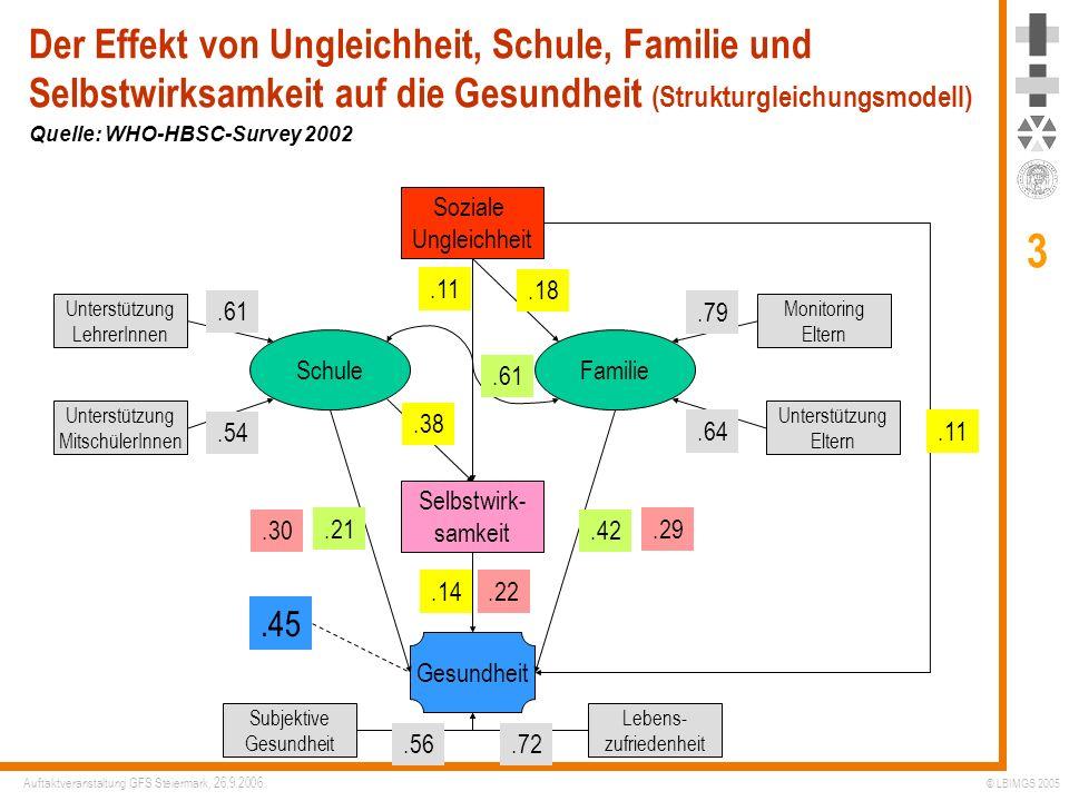Der Effekt von Ungleichheit, Schule, Familie und Selbstwirksamkeit auf die Gesundheit (Strukturgleichungsmodell)